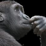 【逆算思考と積み上げ思考】これからの時代において必要な思考方法とは?